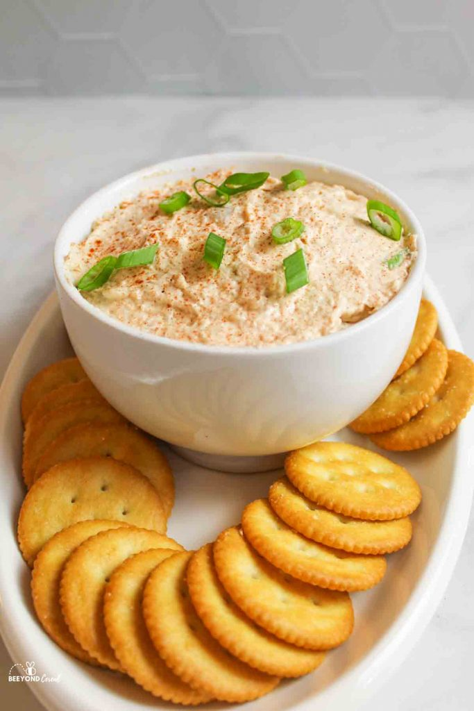 a bowl of smoked trout dip with green onion garnish with ritz crackers arranged around it