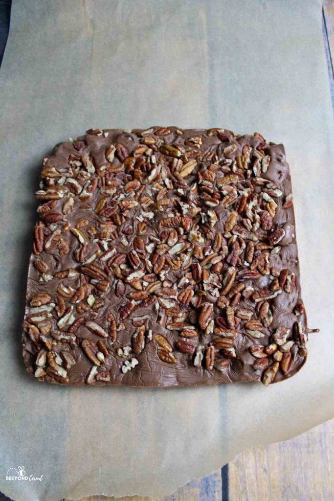 uncut rolo turtle fudge on parchment paper