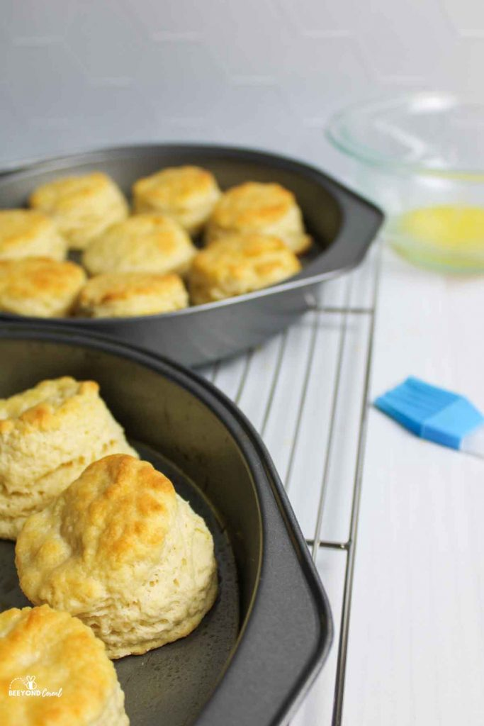 biscuits in cake pans on a wire rack next to a blue brush and bowl of melted butter