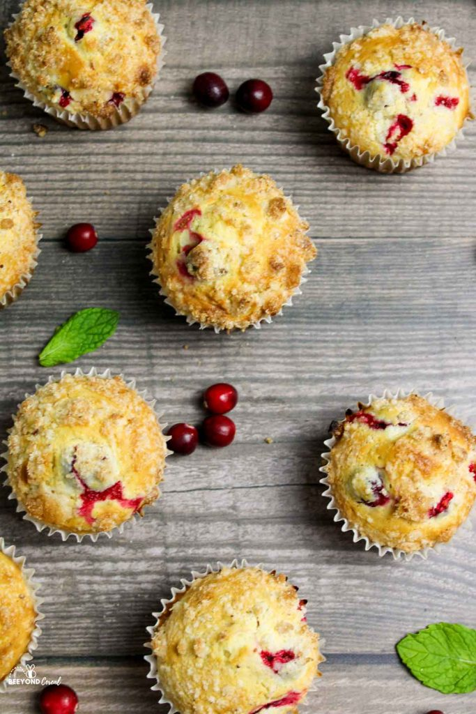 aerial view of scattered cranberry eggnog muffins and cranberries