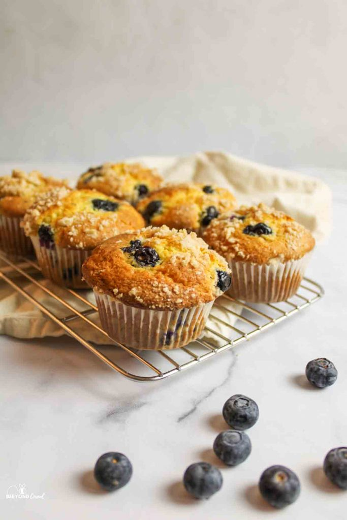 blueberry muffins on a wire cooling rack with scattered blueberries in front