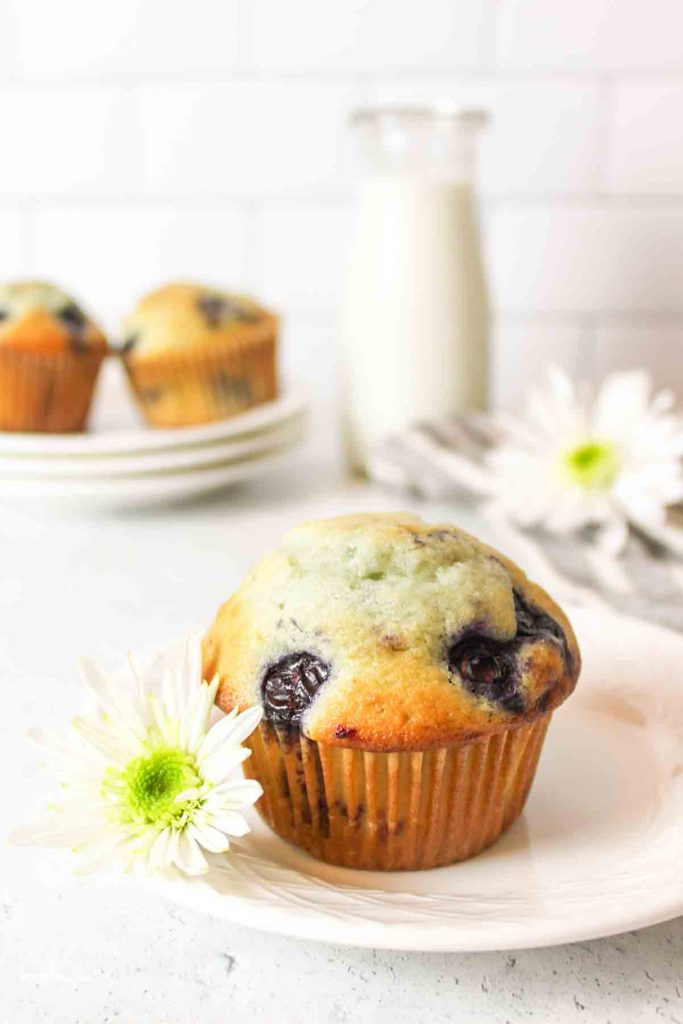 a blueberry muffin on a plate with e white flower and more muffins in background next to milk and another flower