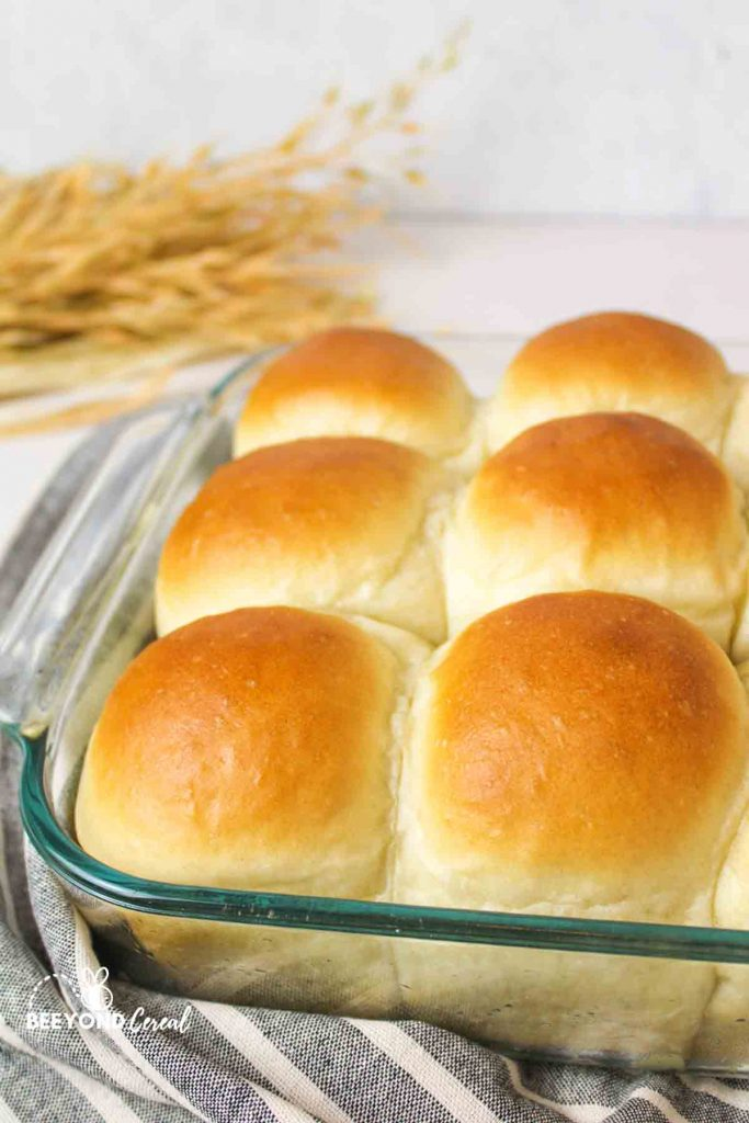 golden topped dinner rolls in a glass baking dish